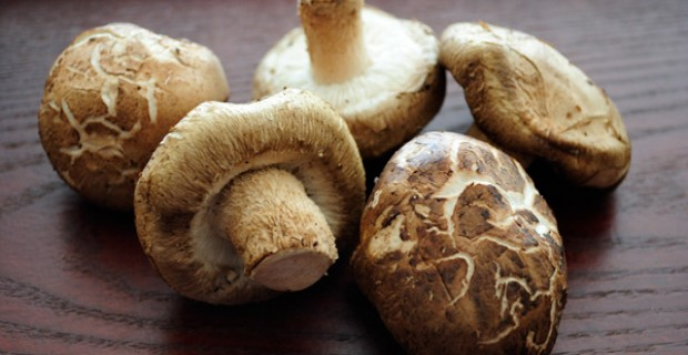funghi-shiitake